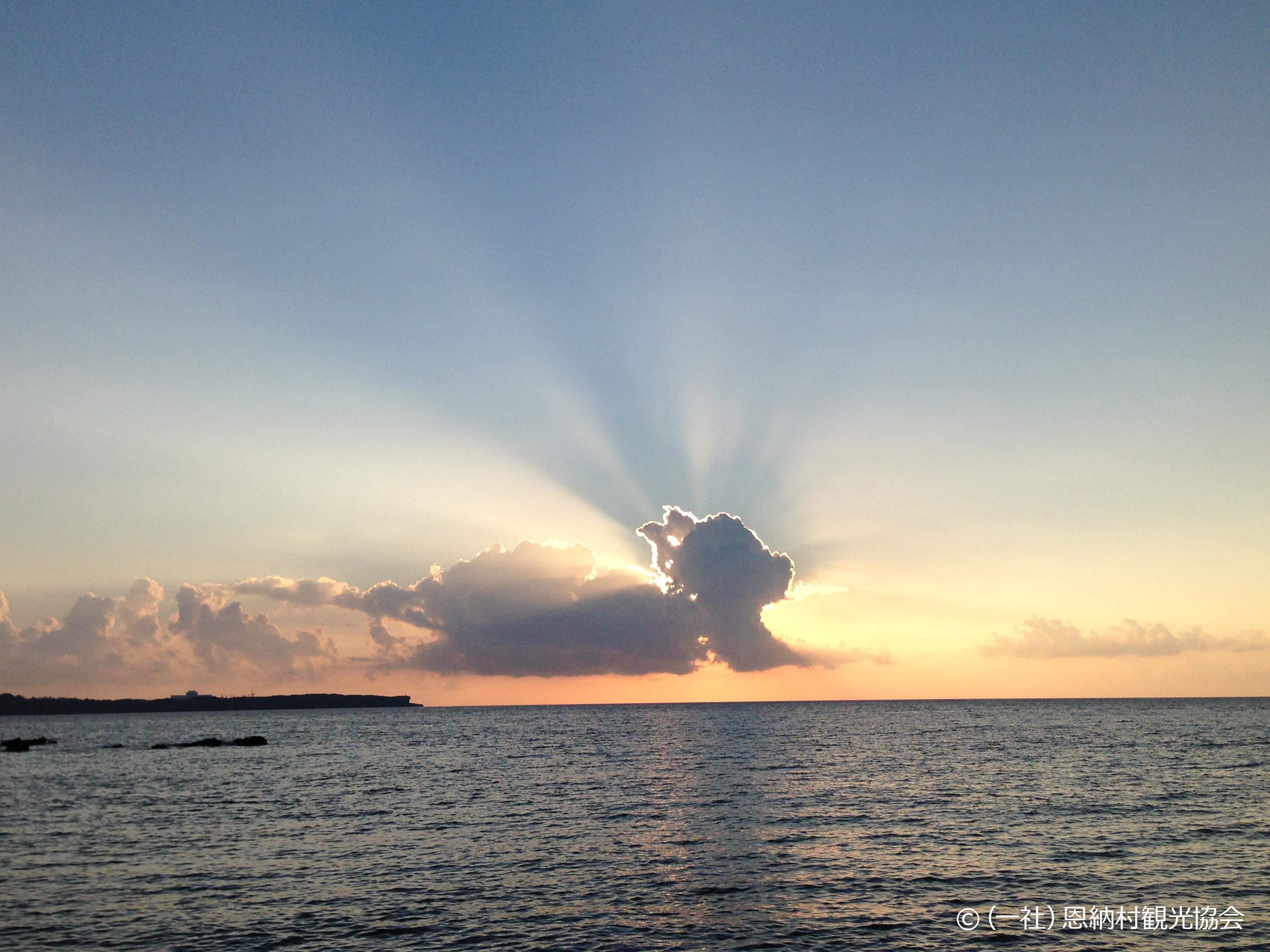 特選「雲のシーサー」